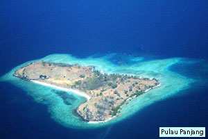 pulau panjang karang asem