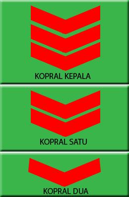 Inilah Urutan Pangkat TNI, Polri dan PNS di Indonesia
