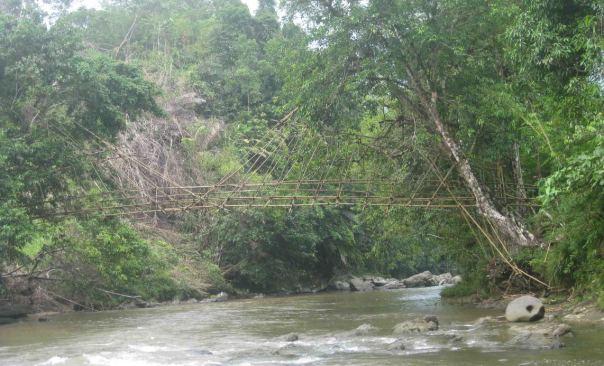 jembatan bambu_1